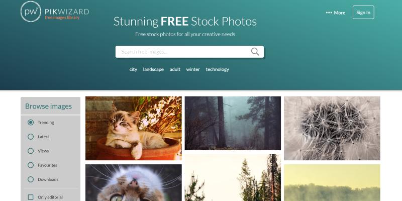 Free Stock Photo Website - Pikwizard
