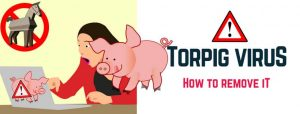 How to remove Torpig Virus