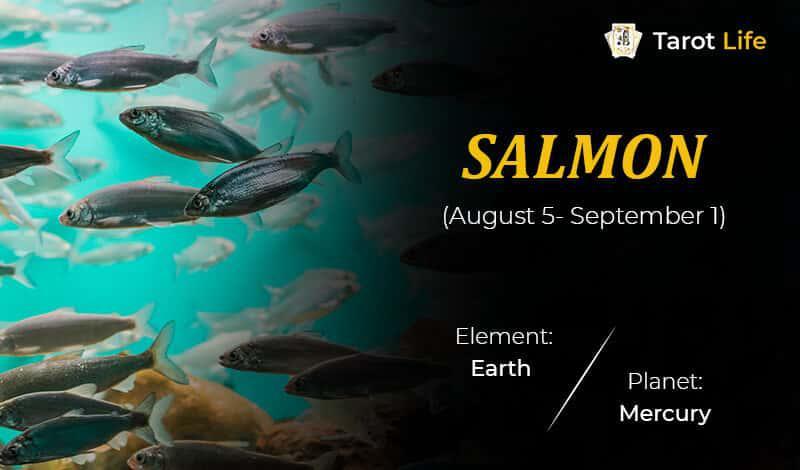 Salmon-August 5- September 1